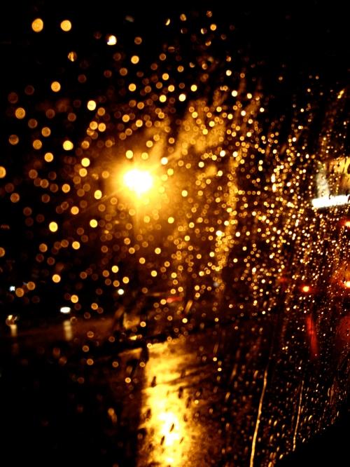 Дождь золотой форум 14